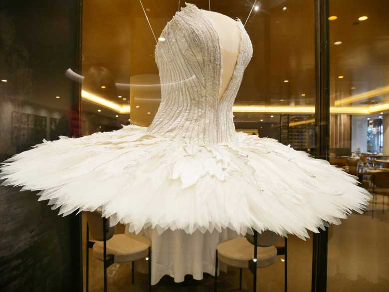 A costume from Swan Lake